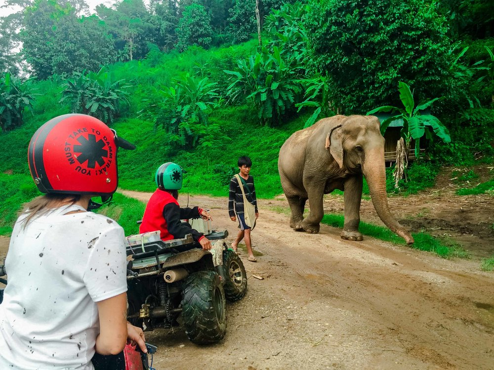 Chiang-Mai-ATV-Tour-8.jpg