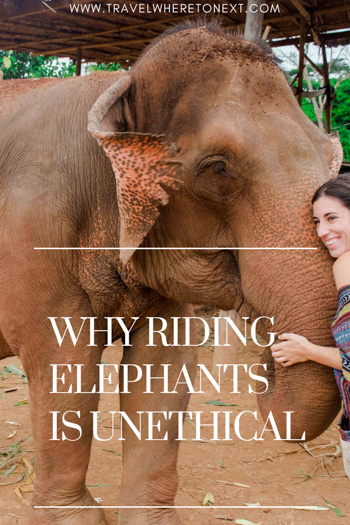 For many, riding on the back of an elephant in Thailand is the ultimate bucket list experience you think you must do when traveling to Thailand. But please don't! Read on to find out why this is an extremely cruel practice.