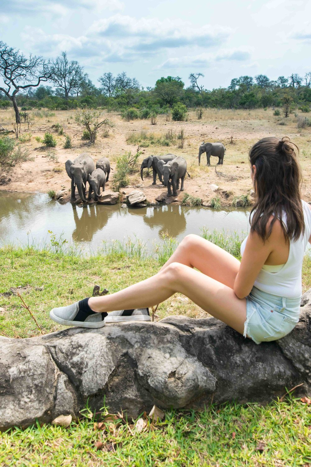 Hanging out with elephants at a luxury safari lodge in Kruger National Park