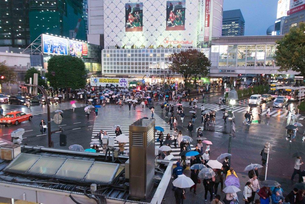 Shibuya Crossing -