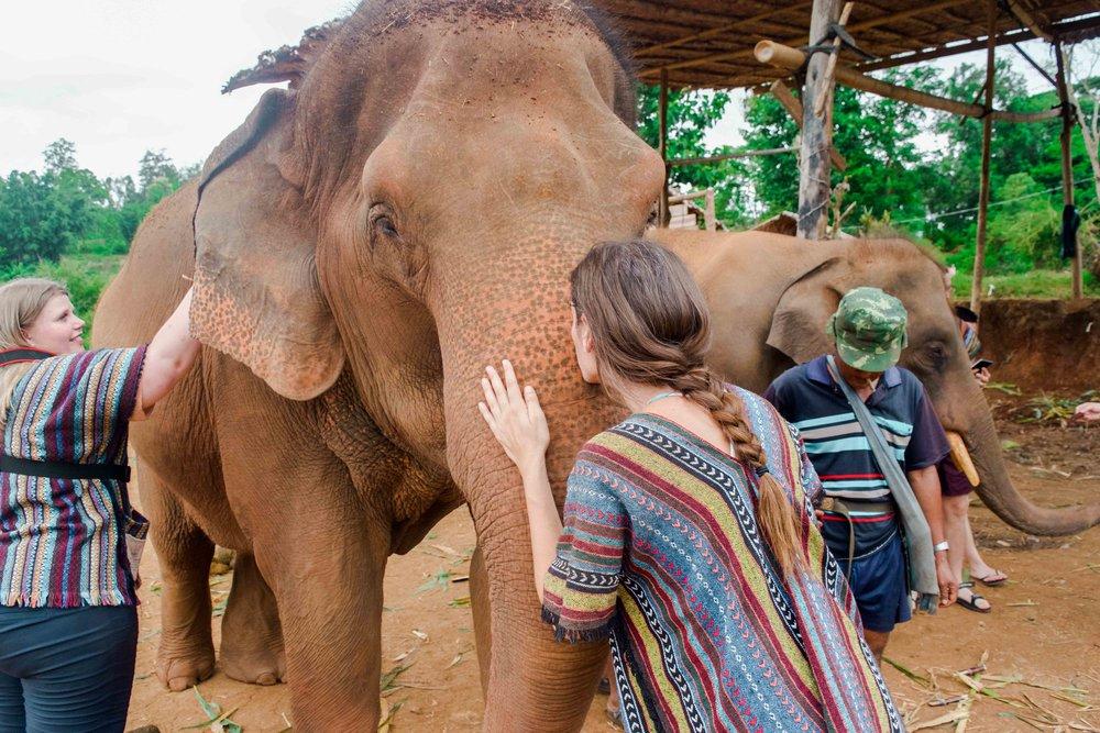 Chiang-Mai-Elephant-Tour-31.jpg