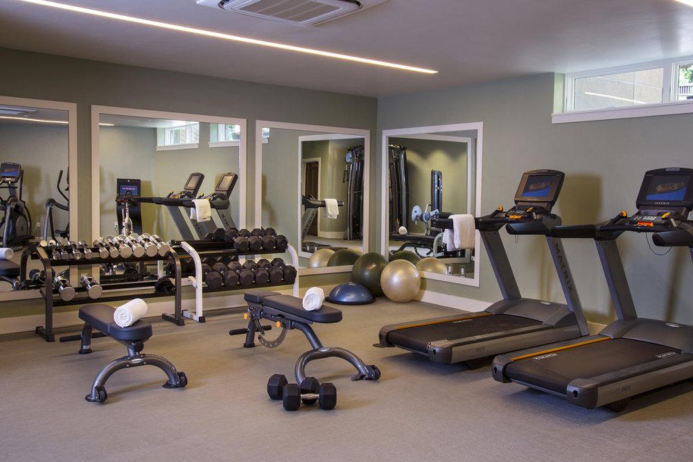 Gym at The Gant Aspen