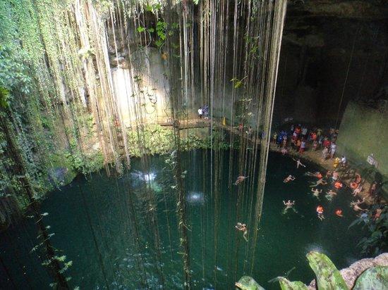 Visiting El Gran Cenote in Mexico