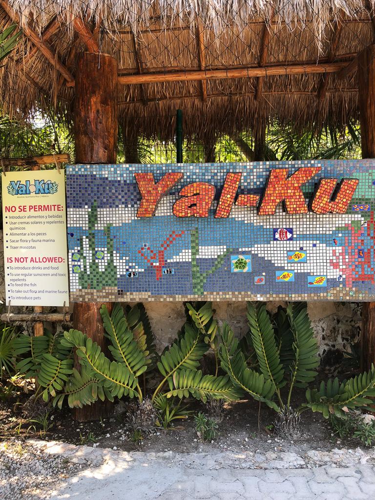 mexico-best-cenote-tulum-4.JPG