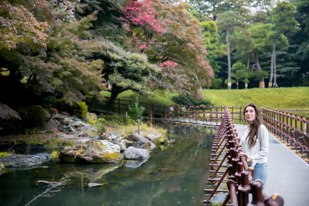 Koishikawa Korakuen (Garden)
