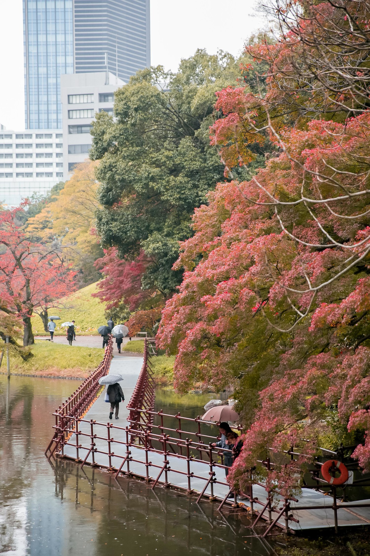 Tokyo Travel Guide & Trip Planning — Where to Next | Budget Travel ...