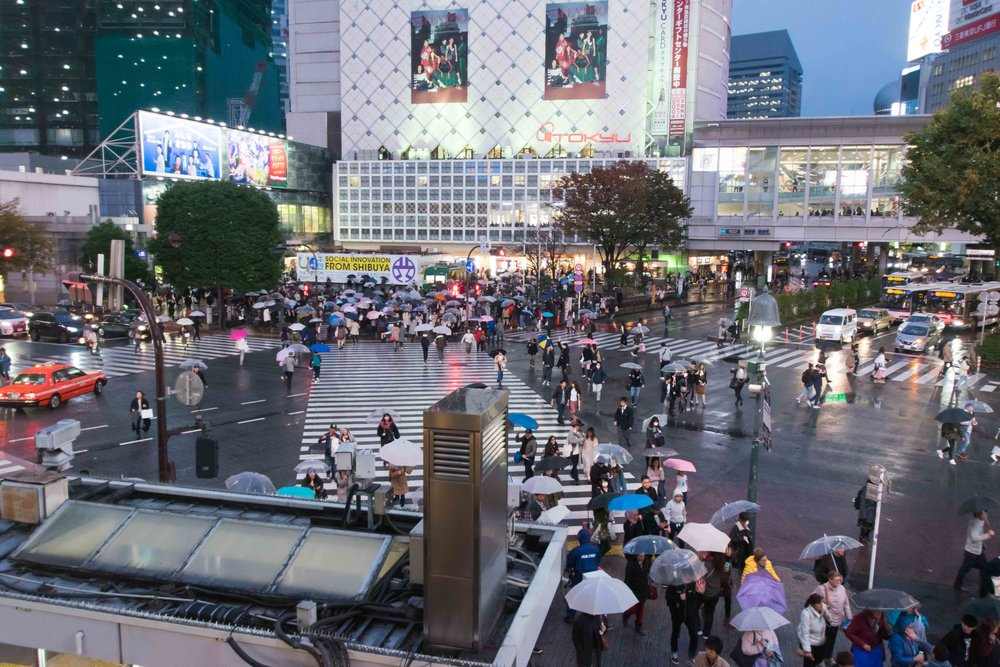 Shibuya Crossing from Starbucks | Tokyo, Japan