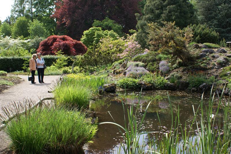 Linz Botanical Garden -