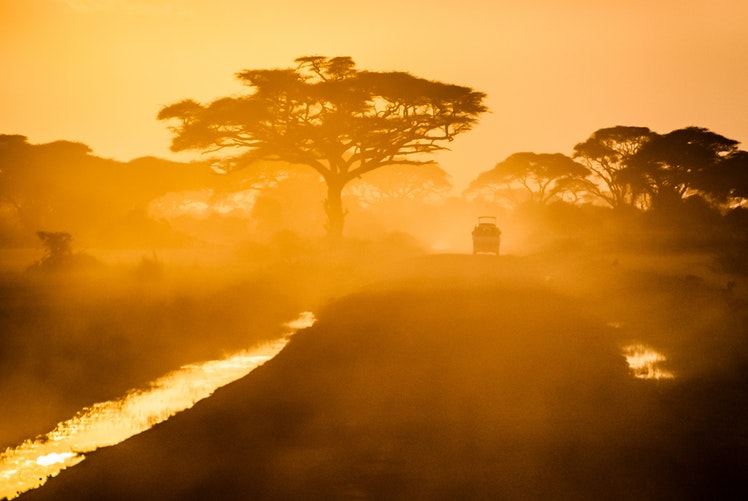 Safety Tips for Africa Safari