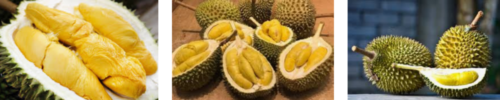 A must try food in Thailand, durian is available for tourists to try at most fruit markets around the city