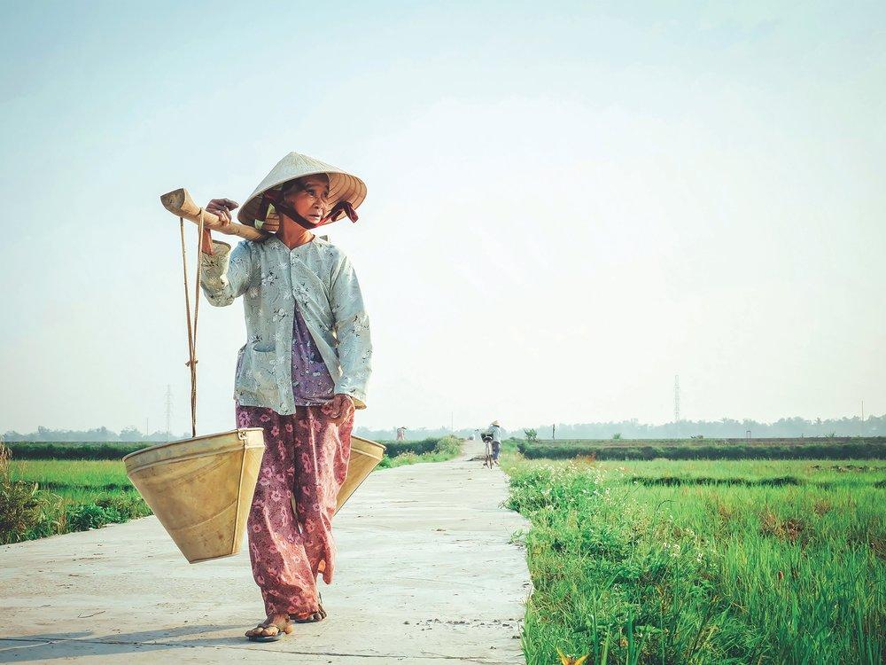 Photo Source:   Hưng Nguyễn Việt   on   Unsplash