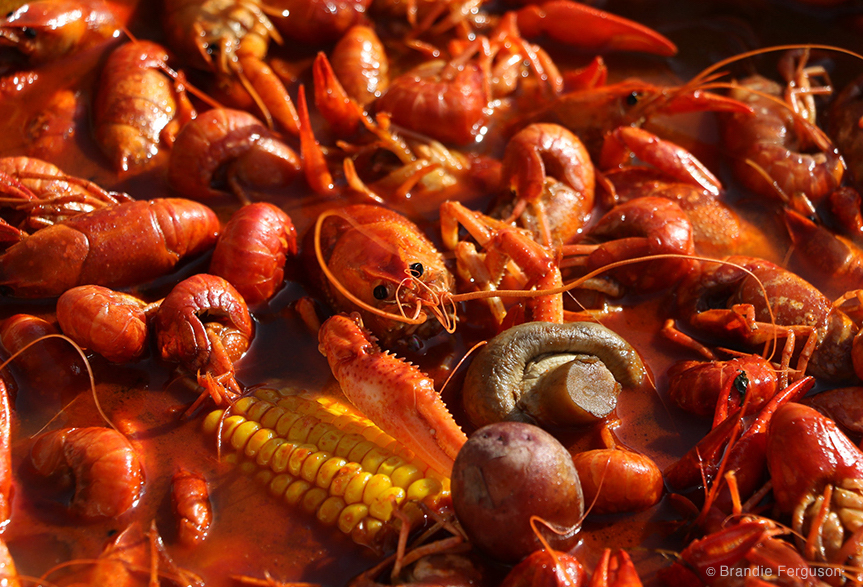 Crawfish Boil by Brandie Ferguson