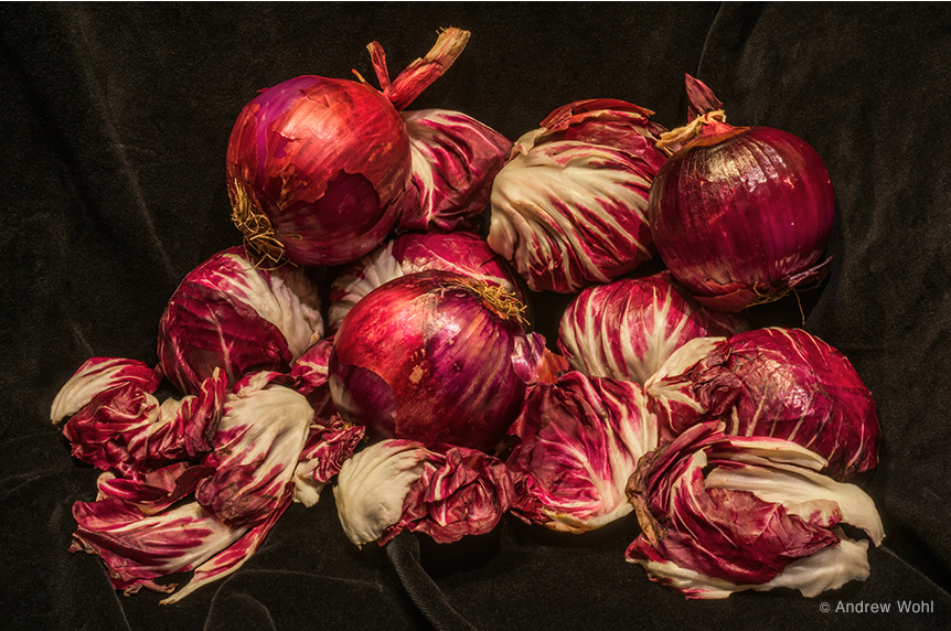 Red Onions and Radicchio by Andrew Wohl