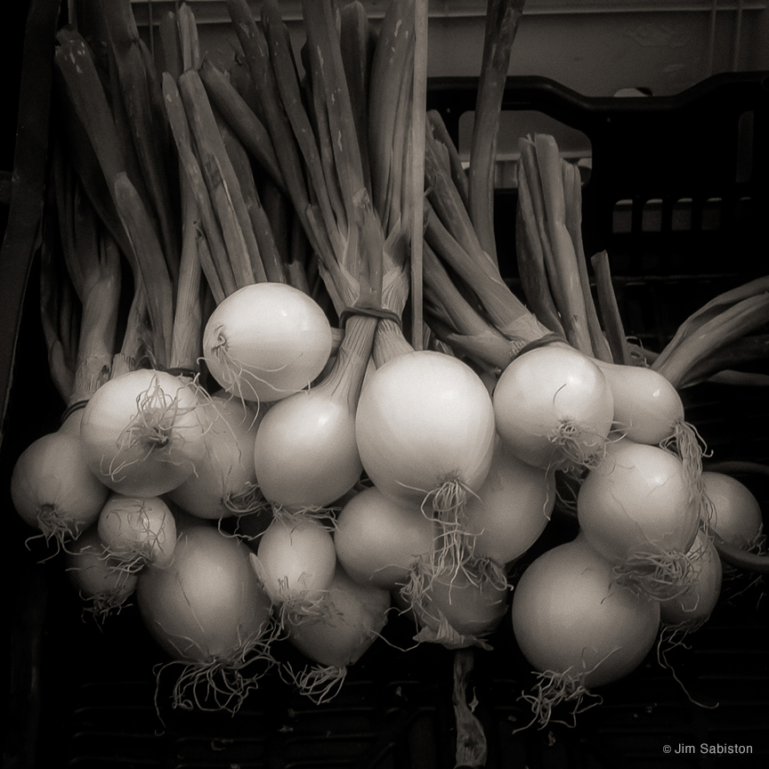 Venetian Scallions by Jim Sabiston