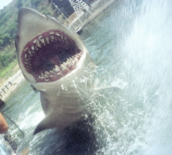Jaws still gets the screams at Universal Studios. Photo Credit:  Andrew Thomas via  Wikimedia Commons .