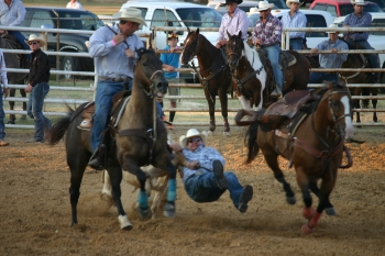 Rodeo is a lot of heart and talent for very little money. Photo credit: Steve Howen.