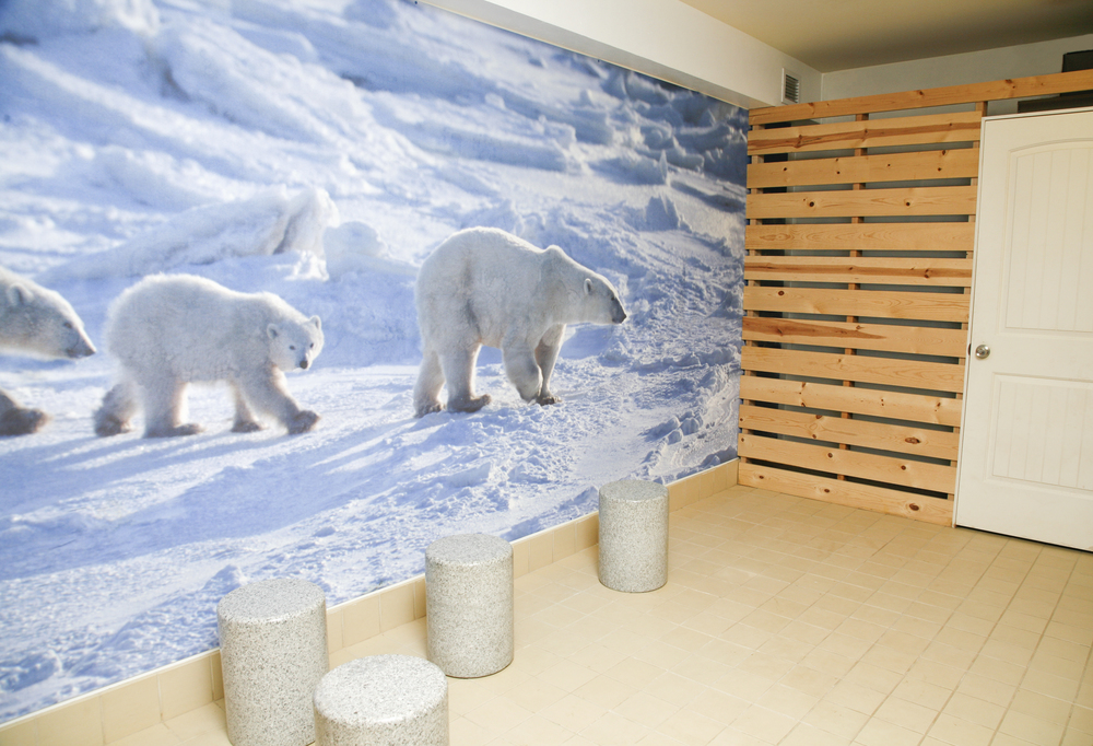 Ice Room Our ice room is kept at a low temperature to help close pores after they have been detoxified in our saunas.