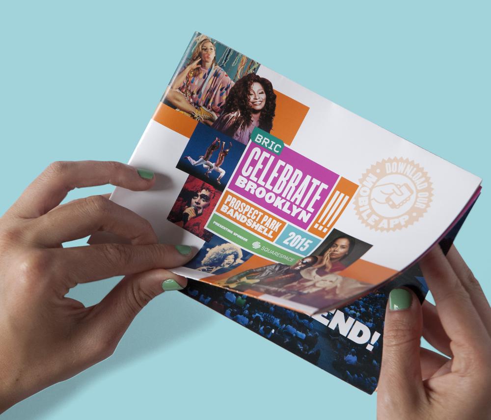 Brochure_BRIC_CB!15_2.jpg