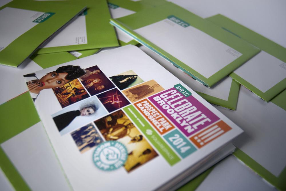 Brochure_BRIC_CB!14_1.jpg