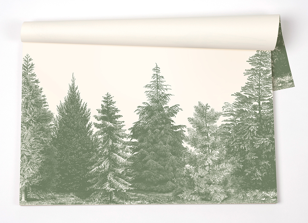 kp1101_evergreentrees placemats.jpg