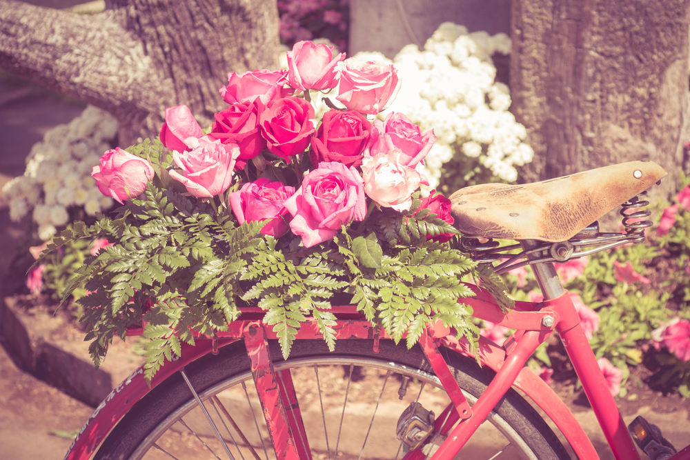 MISC_Bike_Flowers_Roses.jpg