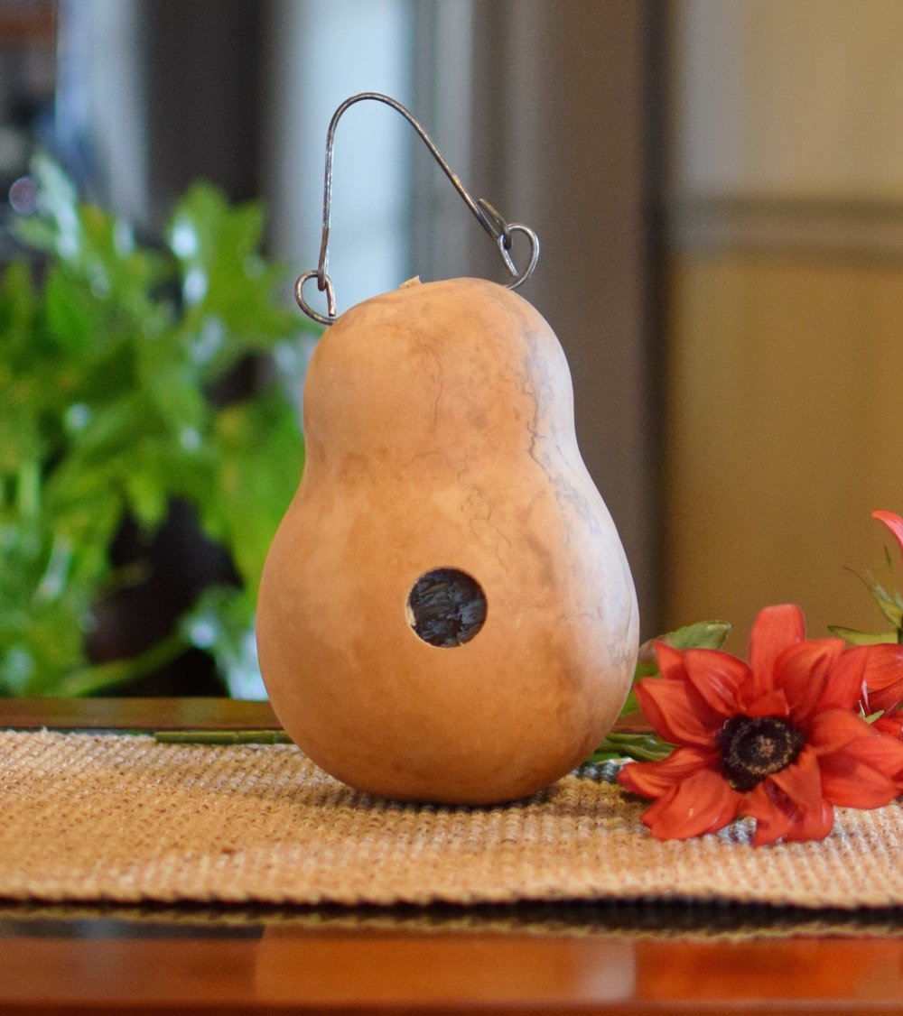 MAKE-YOUR-OWN BIRDHOUSE PAINTED GOURD KIT  $18