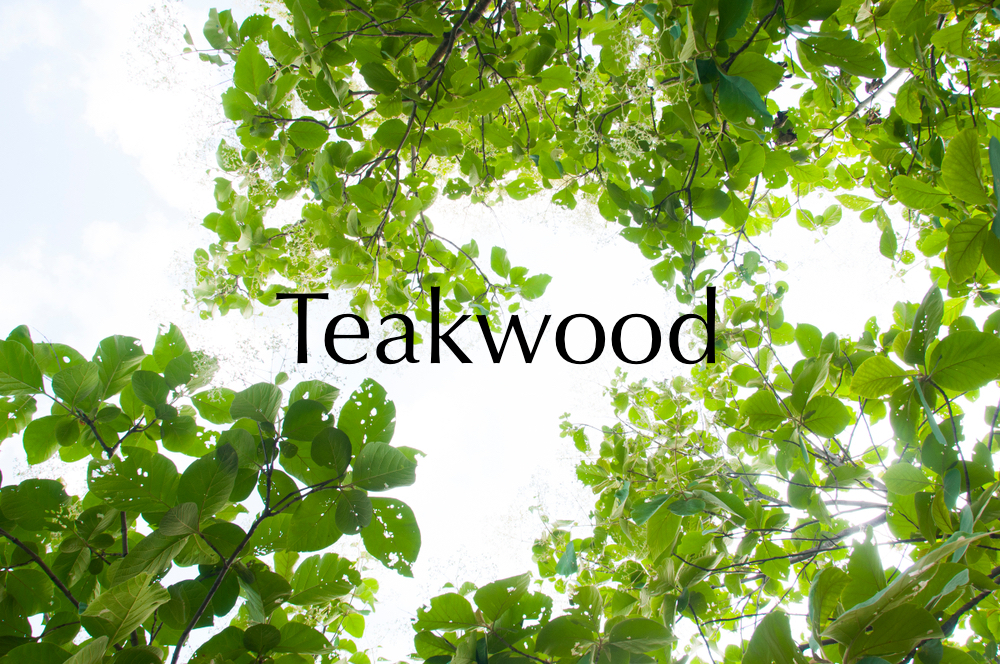 TEAKWOOD CANDLE $30