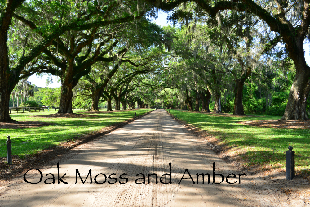 Oakmoss & Amber Candle $30