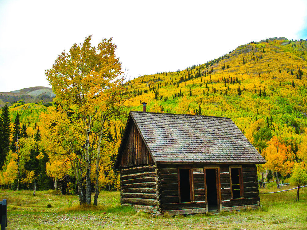 Photo Neill Pieper  - Once a bustling region for gold miners between Ouray and Silverton, the gold is now found in the form of aspen trees.