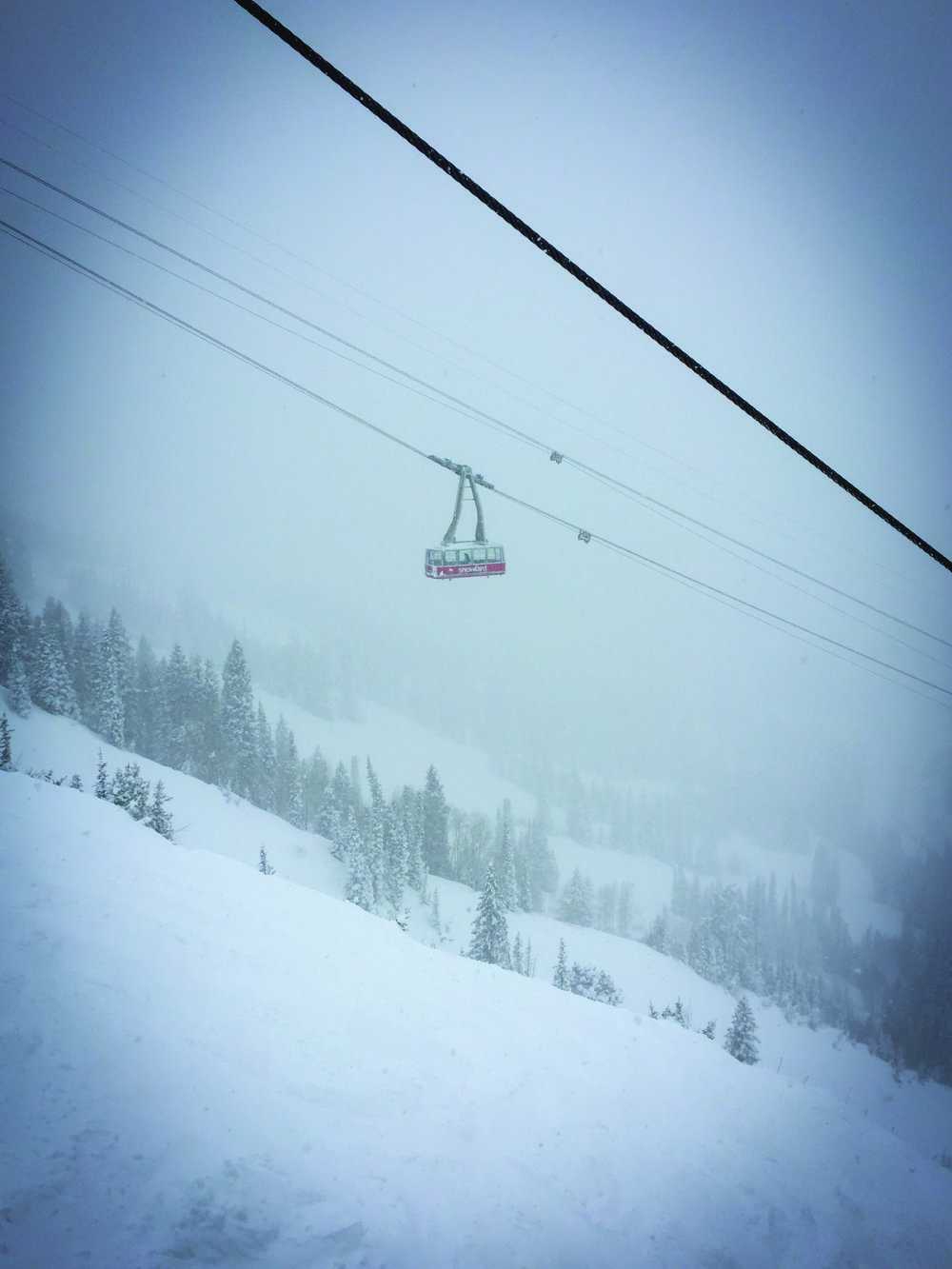 The aerial tram at Snowbird Ski Resort glides past on a powder day. Photo Neill Pieper