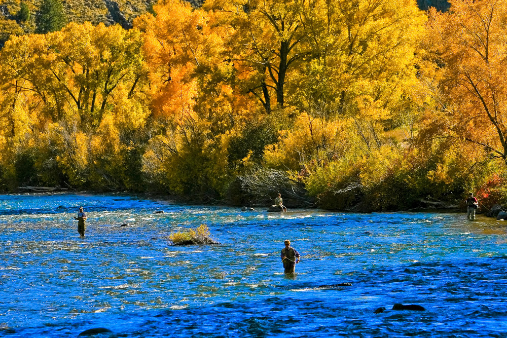 Fly-fishing for trout near the town of Gunnison. Photo: Matt Inden/Miles