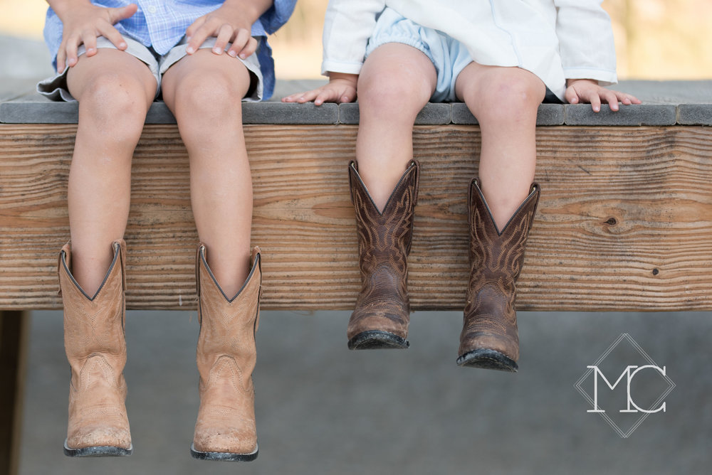 image from a belle meade nashville family lifestyle photo session on farm