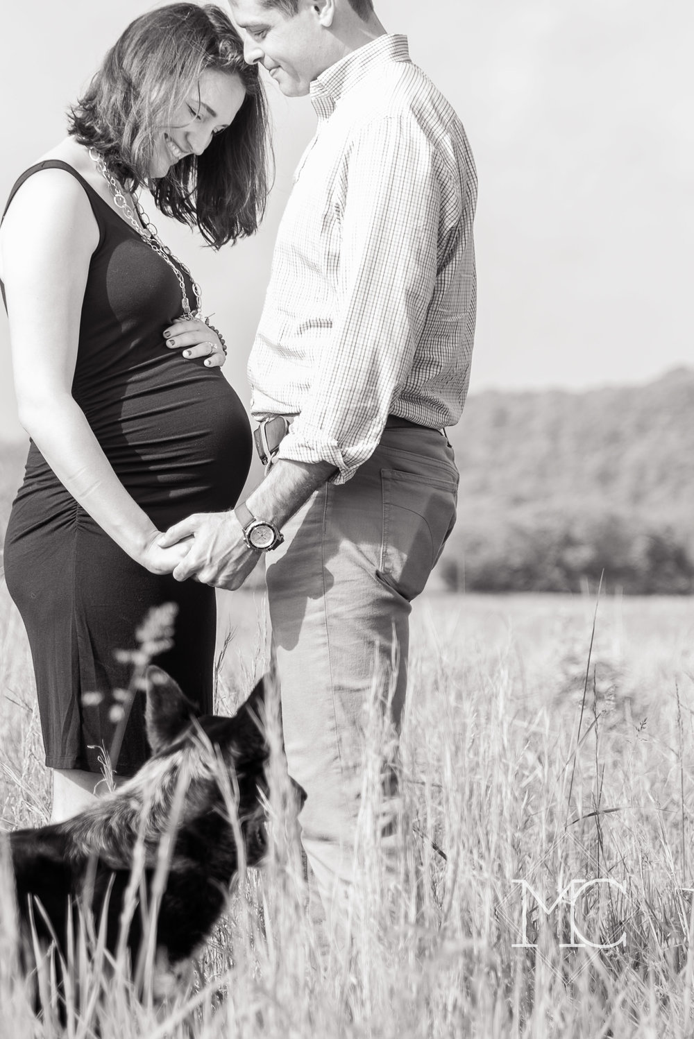 image from a nashville lifestyle maternity session in bells bend farm in tennessee