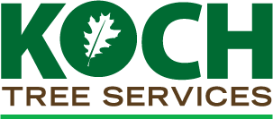Koch Tree Services
