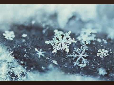Due to the weather we will be closing at 2pm today. We will be open tomorrow at our regular time. We apologize for any inconvenience this may cause.