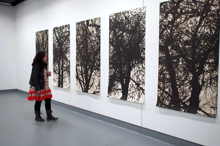 Large scale prints by Charles Cohan (photo by Jonathan Tse)