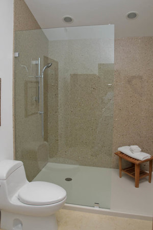 Why Your Bathroom Needs a Solid Surface Shower — CounterSync