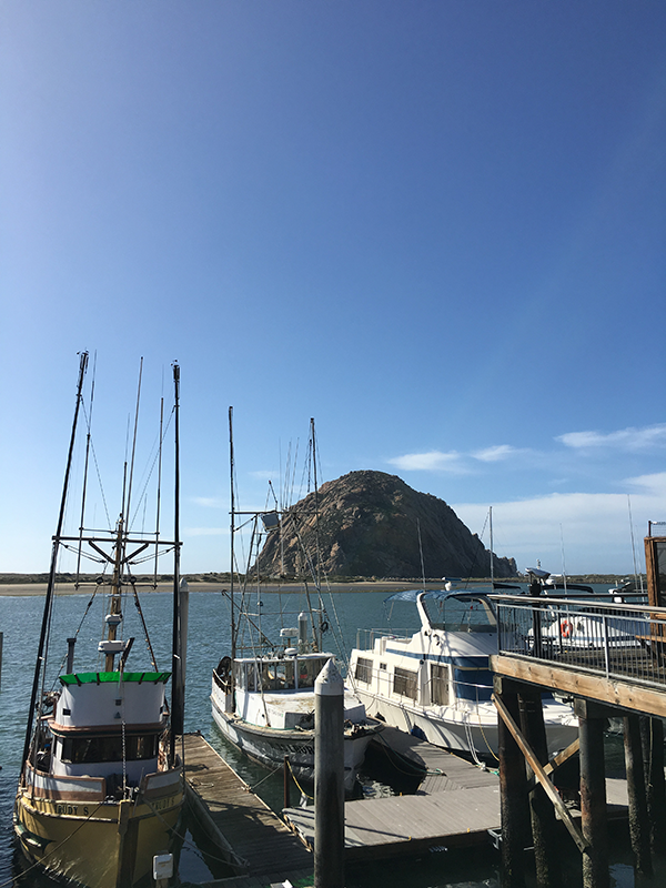 Morro Rock insolence + wine
