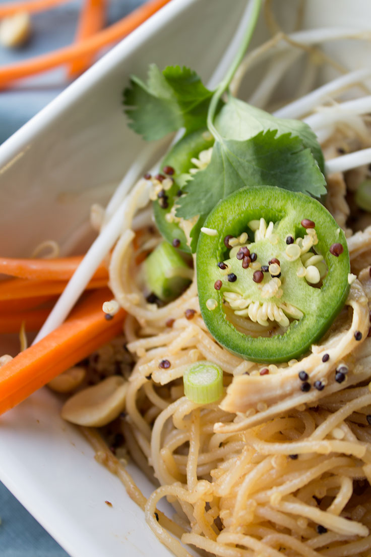 spicy-thai-chicken-noodle-quinoa-7.jpg