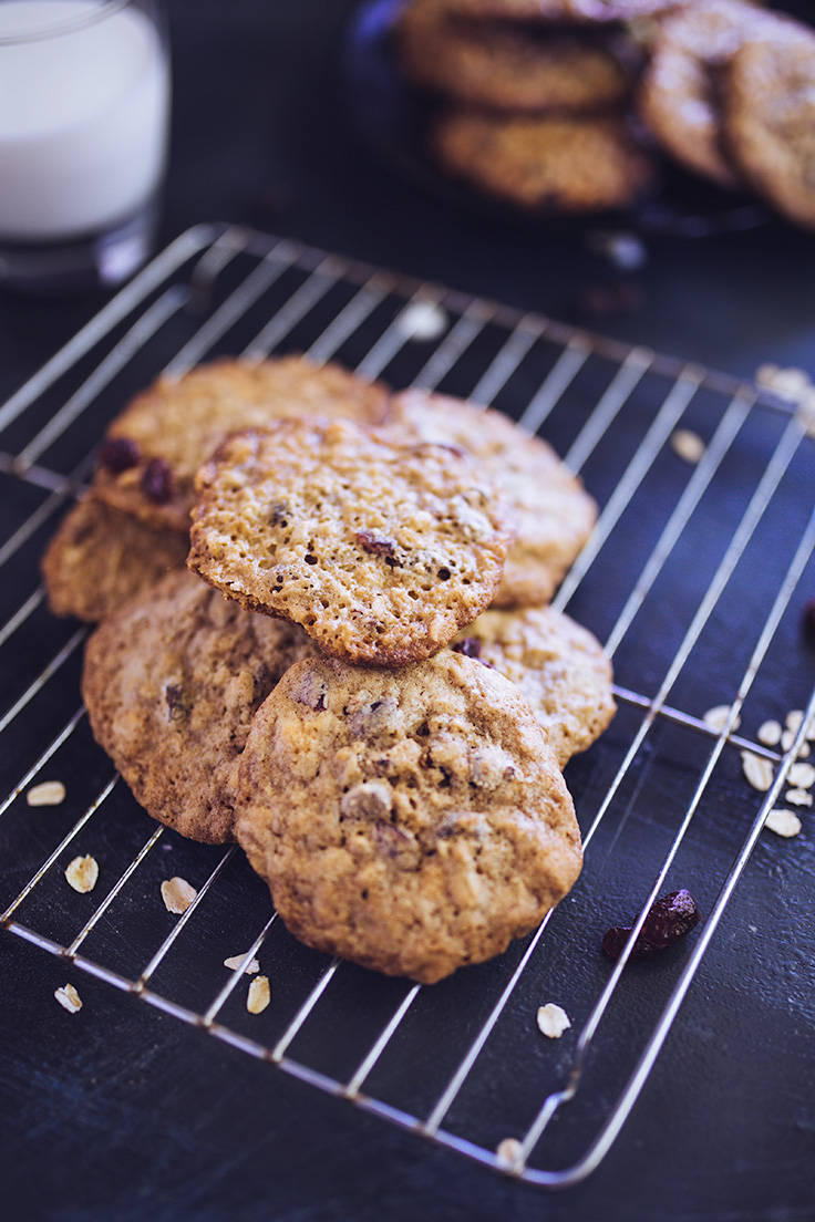 double-chocolate-oatmeal-cranberry-cookies-23.jpg