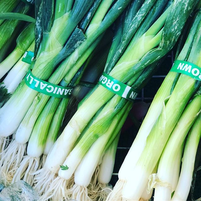 Are you eating the stems of your green onions? You should be! They have a great flavor. PS Get our app and we will deliver onions to you 🚙👌