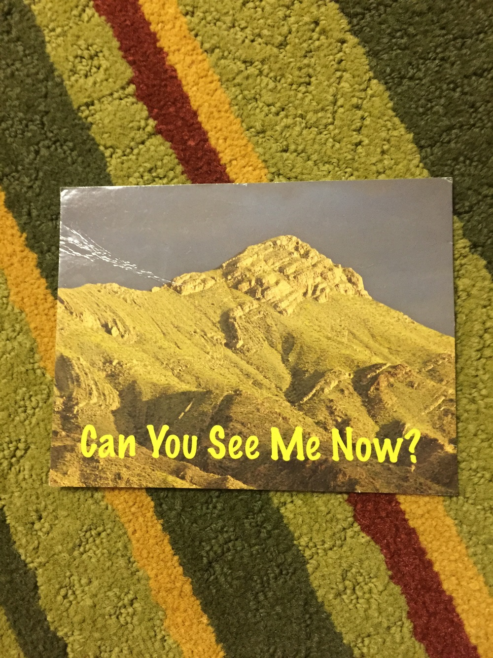 Okay, guys. We actually SAW Turtleback Mountain and we still have NOT A CLUE as to what this postcard means.