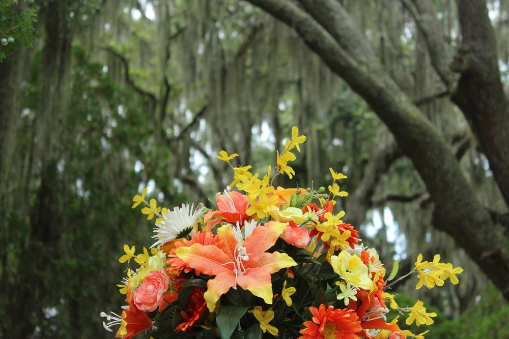 Bonadventure Cemetery, Savannah, Georgia