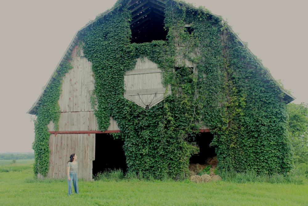 Abandoned Barn, Iowa