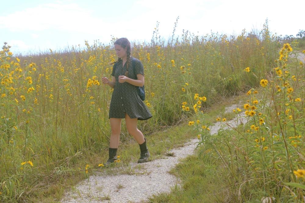 Tallgrass Prairie National Preserve, Strong City, Kansas