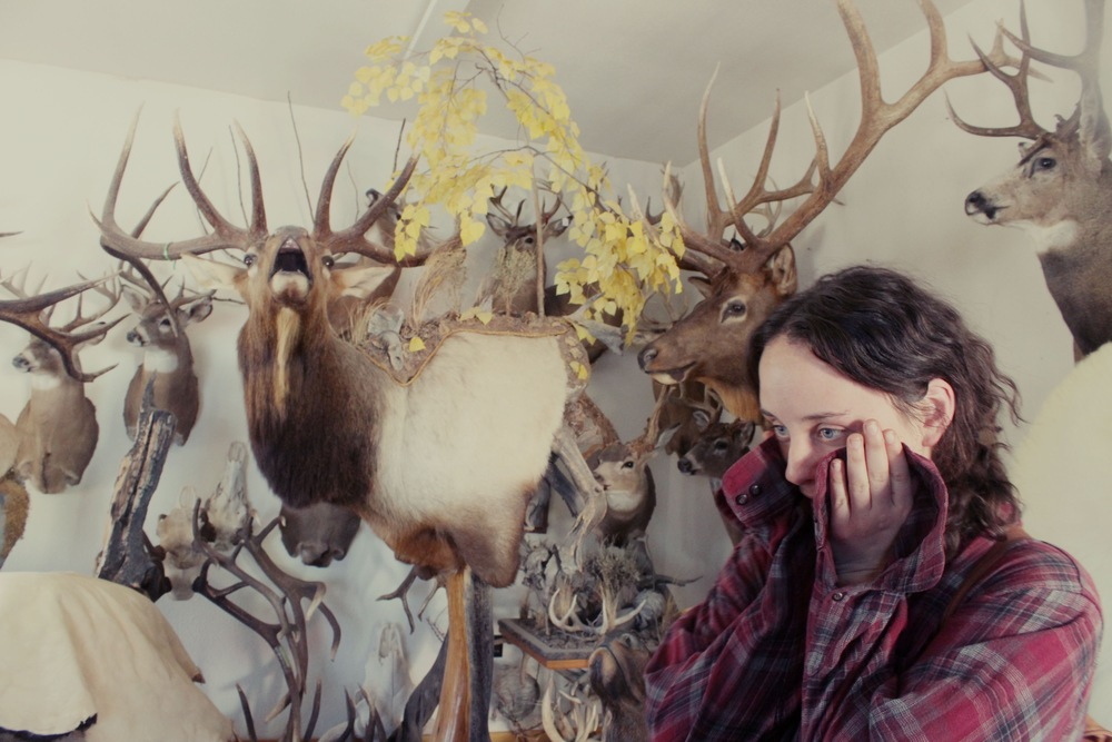 Windy Mountain Taxidermy, DuBois, Wyoming