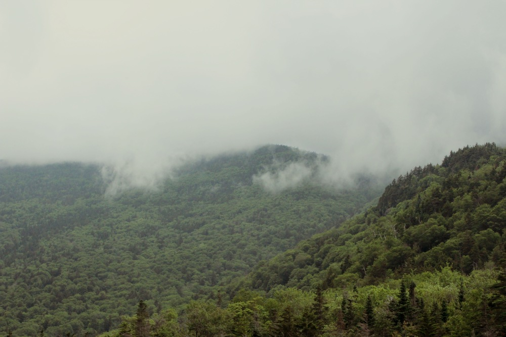 Smokey Mountain National Park, Tennessee