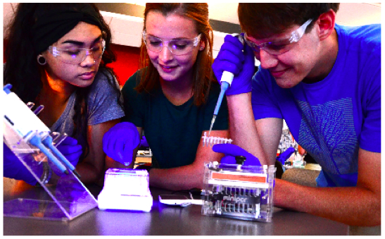 Teach key concepts in molecular biology, genetics, and biological engineering through hands-on labs.