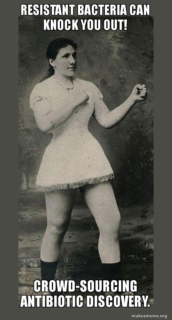 Monica Tischler