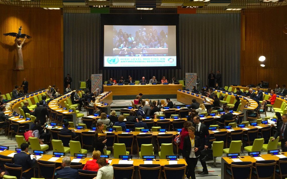 UN HIGH-LEVEL AMR MEETING